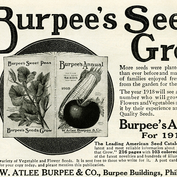 Burpee's Seeds Annual 1918, free magazine advertisement, free vintage ad, free vintage image, public domain advertisement, vintage seed catalogue ad