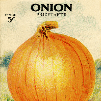 De Giorgi Bros seed packet, free vintage image, onion planting instructions, onion seed packet, vintage onion, vintage seed packet