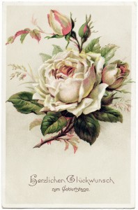 free vintage image, german birthday postcard, white rose image, free digital floral graphic, herzlichen gluckwunsch zum geburtstage, vintage rose postcard, old postcard flowers