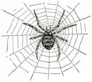 free vintage clipart spider, creepy Halloween spider, vintage spider graphic, black and white clipart, free vintage printable spider, vintage insect sketch, free digital spider image