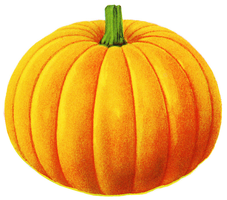 vintage pumpkin clip art - photo #15