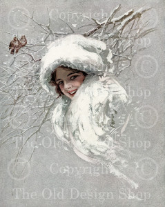harrison fisher, snowbirds, snow queen, winter image, victorian lady, birds on branch