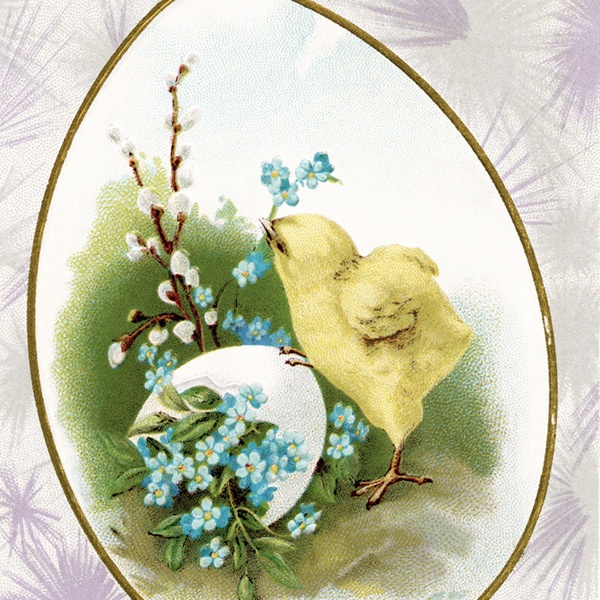 antique postcard, easter chick and egg, old easter card, vintage easter post card