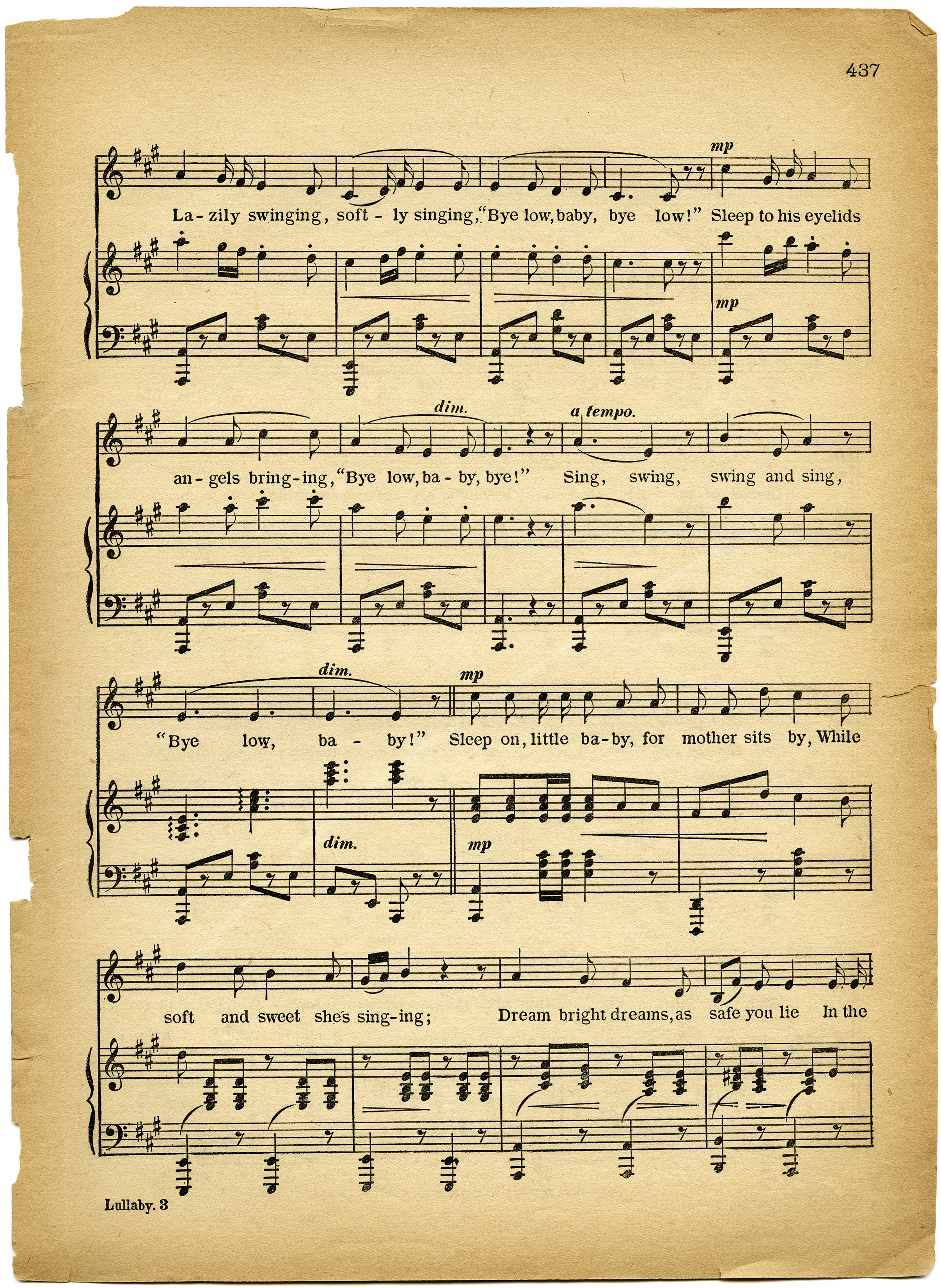 music of the south essay African music essay african music essay essay on african american vernacular 1823 words | 8 pages  this is the culture and music of the south the south has .