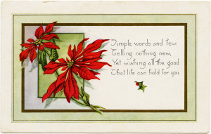 vintage christmas postcard, pointsettia clipart, old fashioned holiday printable, christmas flower card, digital whitney postcard