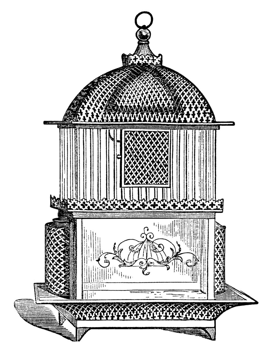 free vintage birdcage clip art images old design shop blog