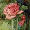 old fashioned birthday card, Victorian postcard graphics, vintage birthday postcard, vintage flower illustration, pink rose clip art