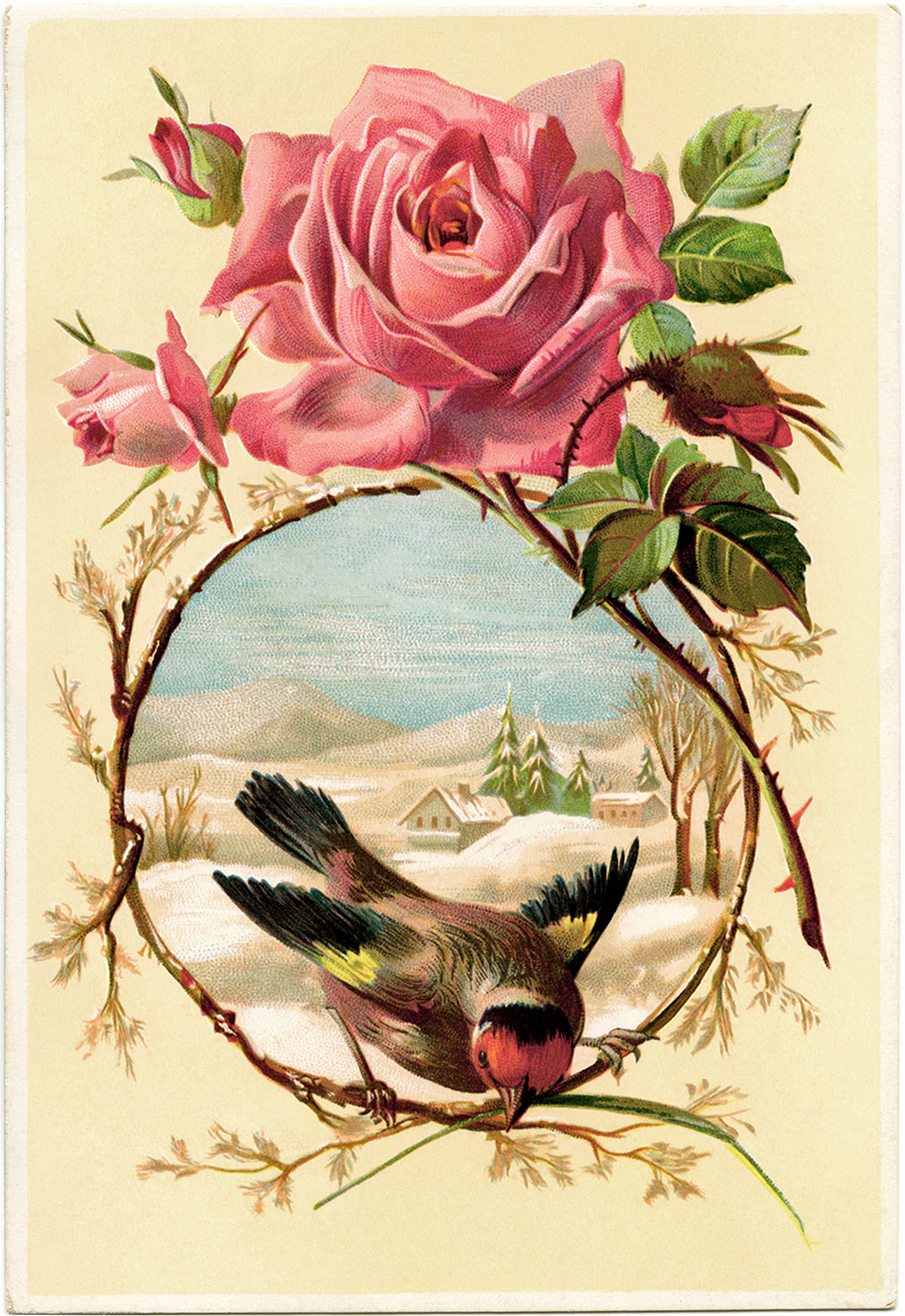 Rose and Bird Card ~ Free Victorian Graphic  Old Design  # Vintage Kommode Rosa