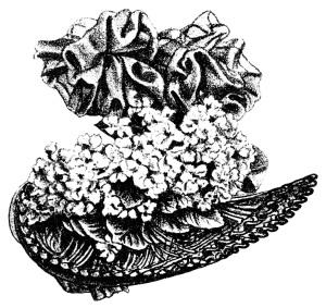 antique hat illustration, black and white graphics free, summer fashion for women 1898, victorian ladies hat, vintage hat clip art
