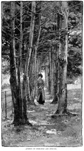 Alfred Parsons, avenue of hemlocks and spruces, vintage engraving trees, black and white graphics, Victorian lady outdoors clip art