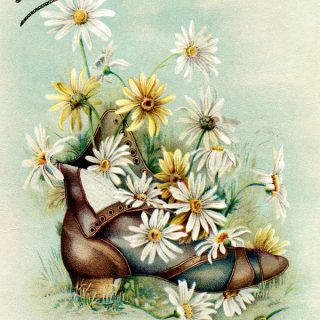 Free vintage clip art trading card bouquet of daisies in boot