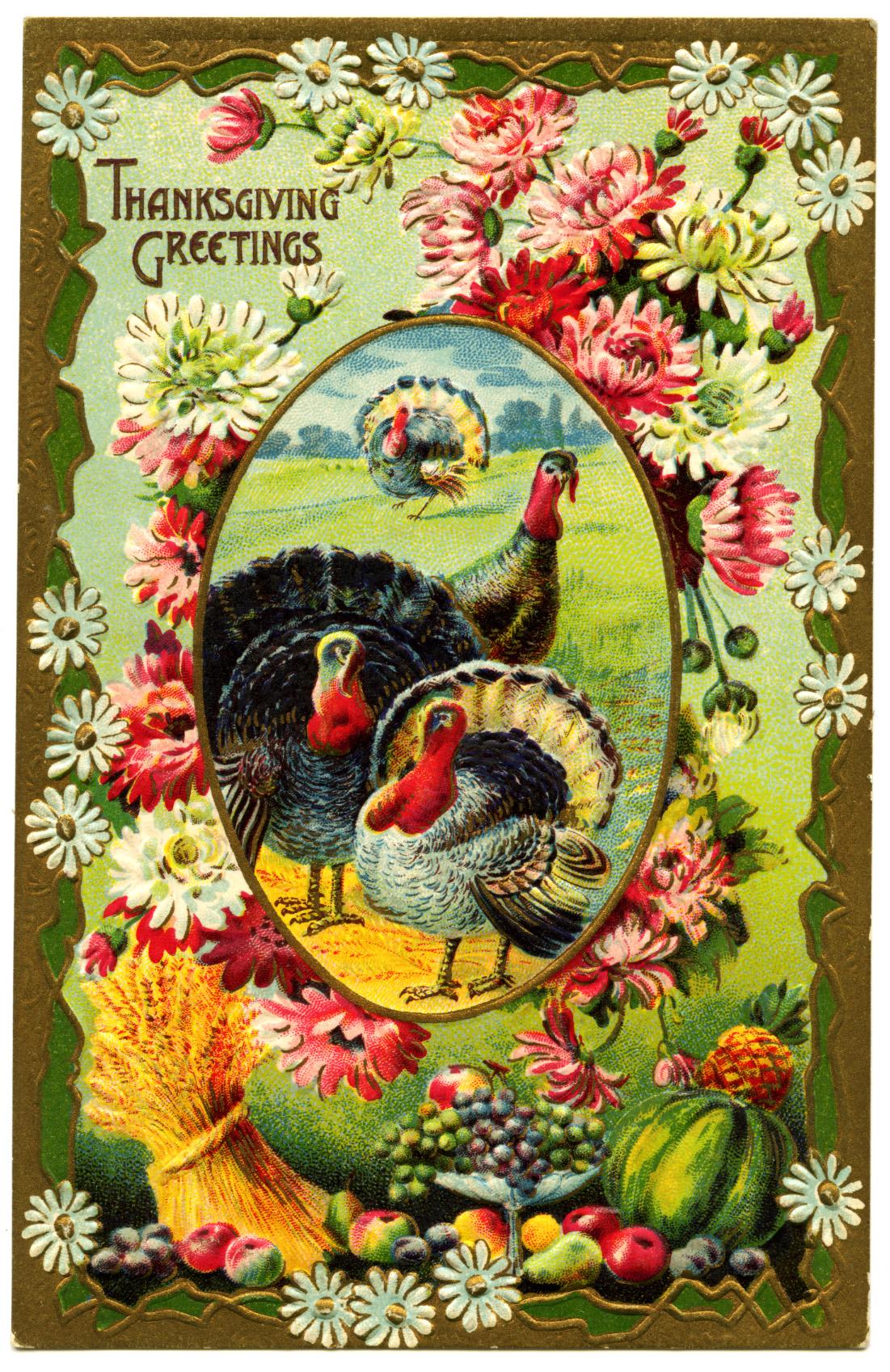 Thanksgiving Turkeys Vintage Postcard - Old Design Shop Blog
