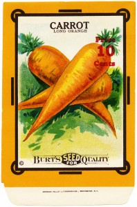 carrot seed packet, old fashioned garden, vintage seed packet