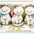 Free vintage clip art Grace Drayton three kittens postcard