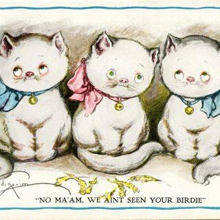 Free vintage clip art Grace Drayton three kittens postcard