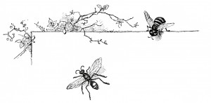 Free vintage clip art illustration wasp and bee