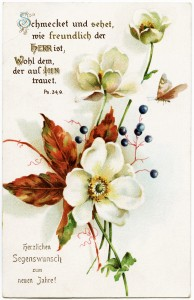 vintage floral postcard, fall colors floral postcard, free digital clipart flower, german new years postcard, white flower, red leaves, free printable flower postcard, vintage floral graphic image