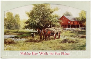 making hay while the sun shines, farm haying scene, farmers horses, free vintage digital postcard, old penny postcard, old fashioned haying, vintage farm image