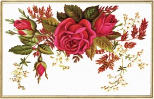 Free vintage floral clip art red rose
