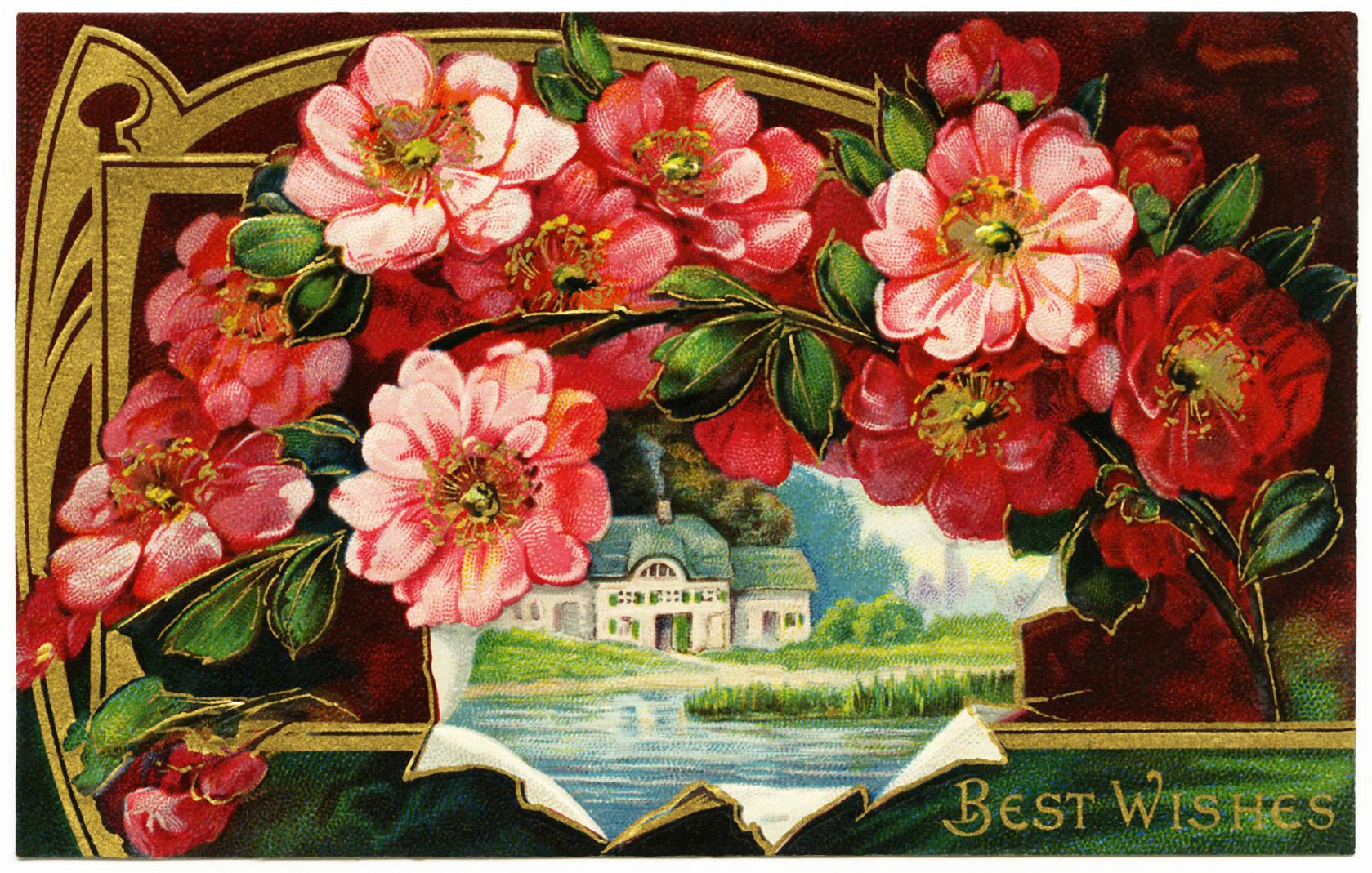 Free Vintage Image ~ Best Wishes Postcard - Old Design Shop Blog