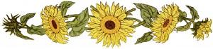 free digital image, kate greenaway flower, sunflower clipart, free printable sunflower, sunflower graphic