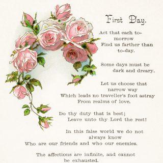 Free vintage illustrated poem pink roses