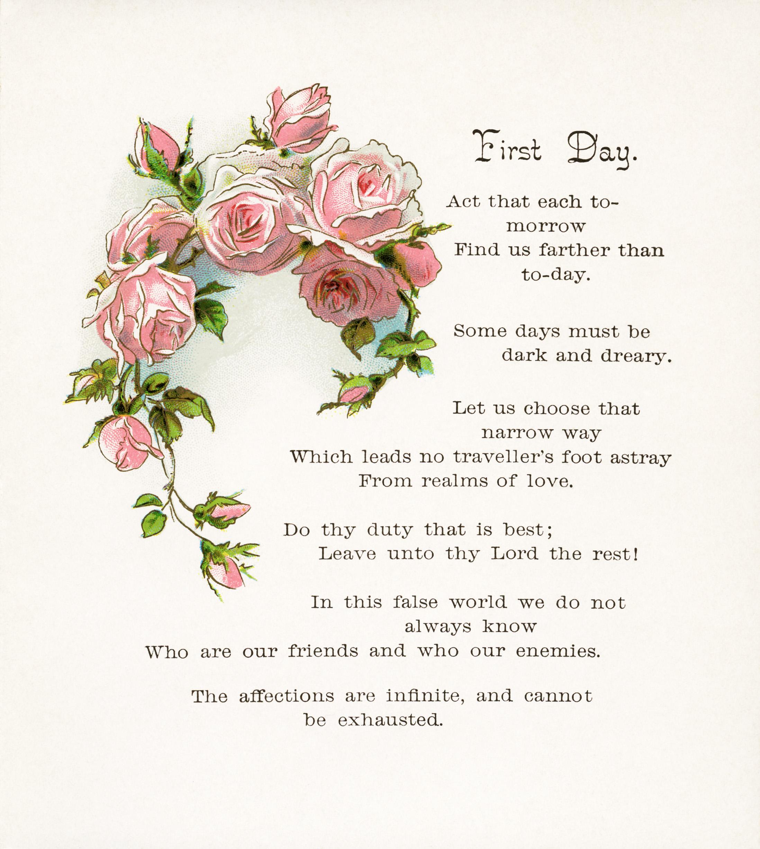 Free vintage clip art pink rose and poem old design shop for Free rose garden designs