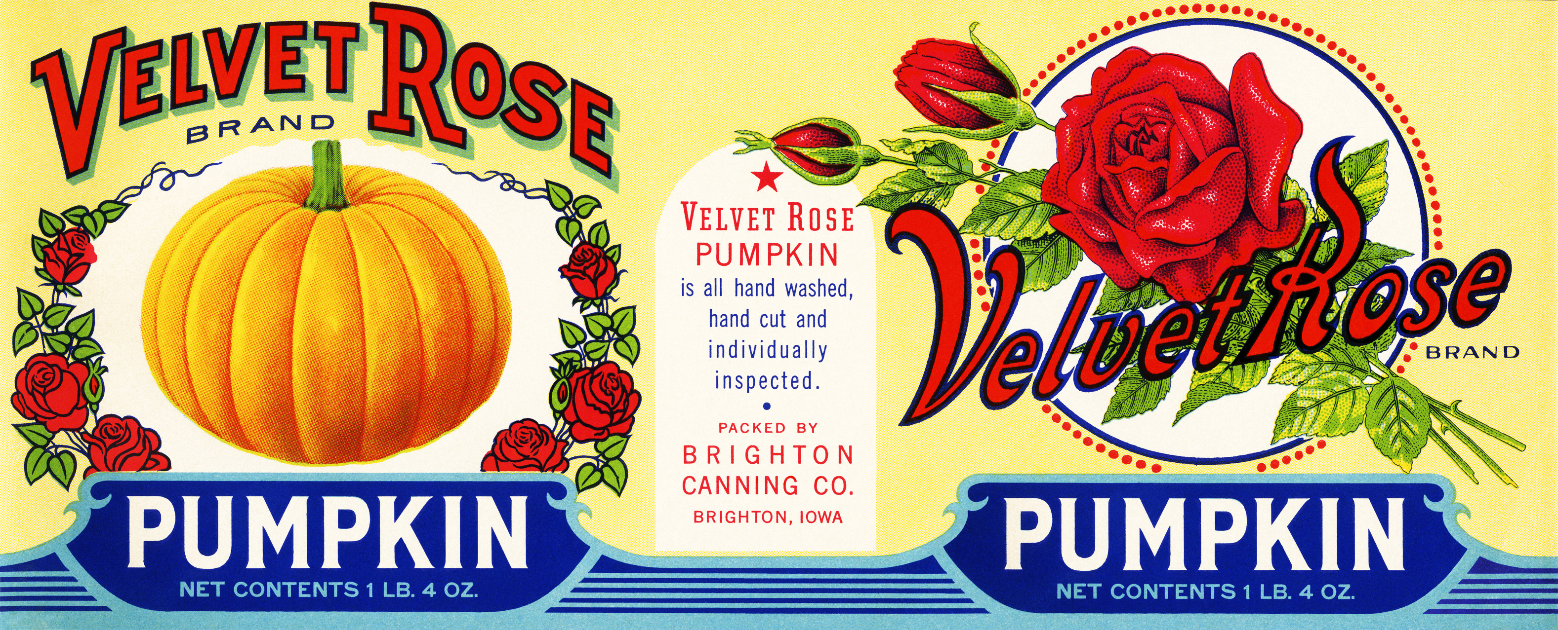 velvet rose pumpkin label, vintage pumpkin label, antique food label, free vintage pumpkin graphic, free printable label, pumpkin rose can label, public domain label