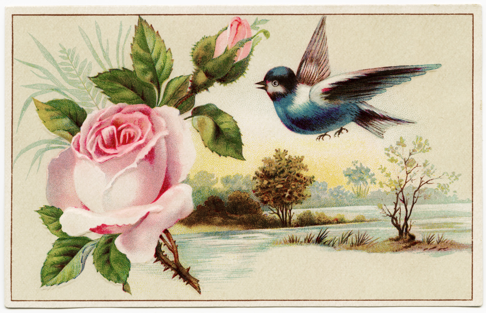 Pink Rose Blue Bird Scenic Victorian Card