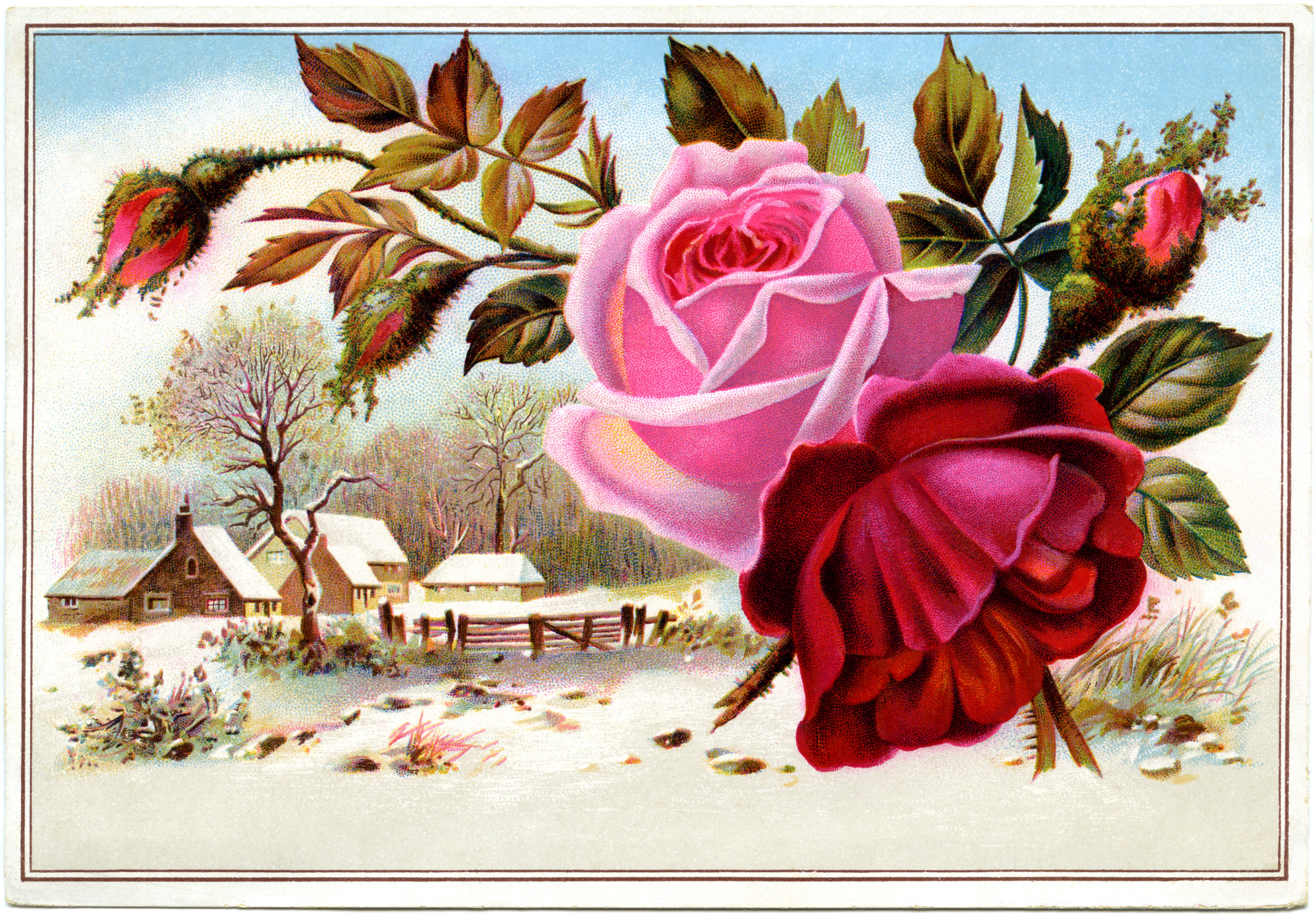 Winter Scene And Flowers Victorian Card Old Design Shop Blog