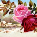 Free vintage clip art Victorian trading card pink red rose over winter country scene
