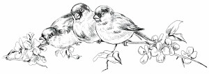 Free vintage black and white clip art birds on branch