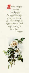 Free vintage poem and rose clip art