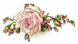 Free vintage pink rose clip art