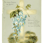 flowers from dell and bower, Susie Barstow skelding, sweet pea, wild rose, the arbutus, vintage poetry, vintage flower, antique easter card, hildesheimer card