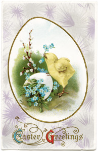 Free vintage Easter clip art chick on egg postcard image