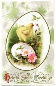 Free vintage clip art Easter chick on egg postcard image