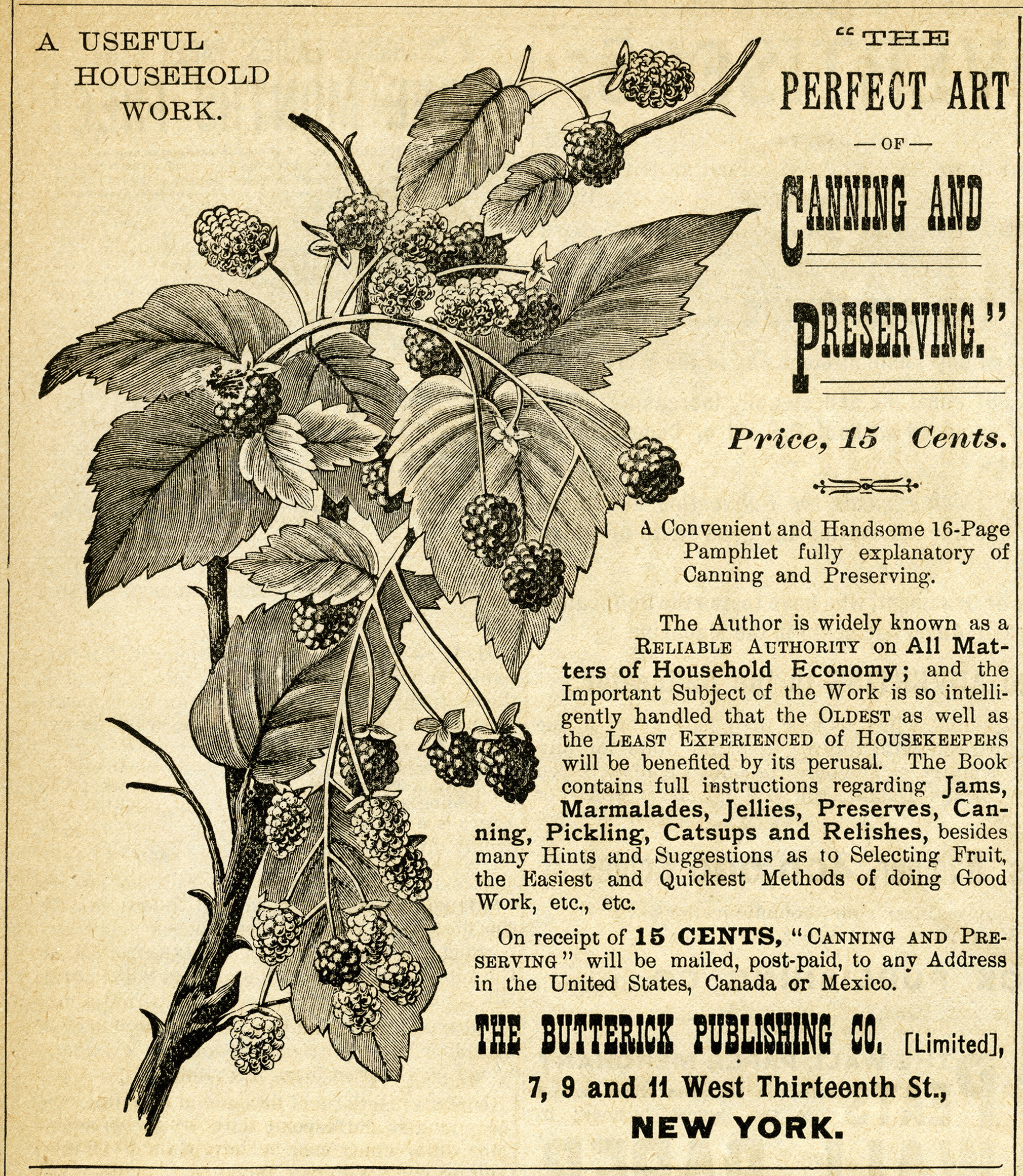 Vintage Canning Ad Raspberries Clipart Antique Magazine Advertisement Free Clip Art Fruit