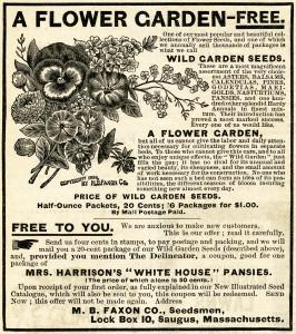 Free vintage clip art flower garden seeds magazine advertisement