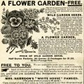 Free vintage clip art flower garden seeds magazine advertisement