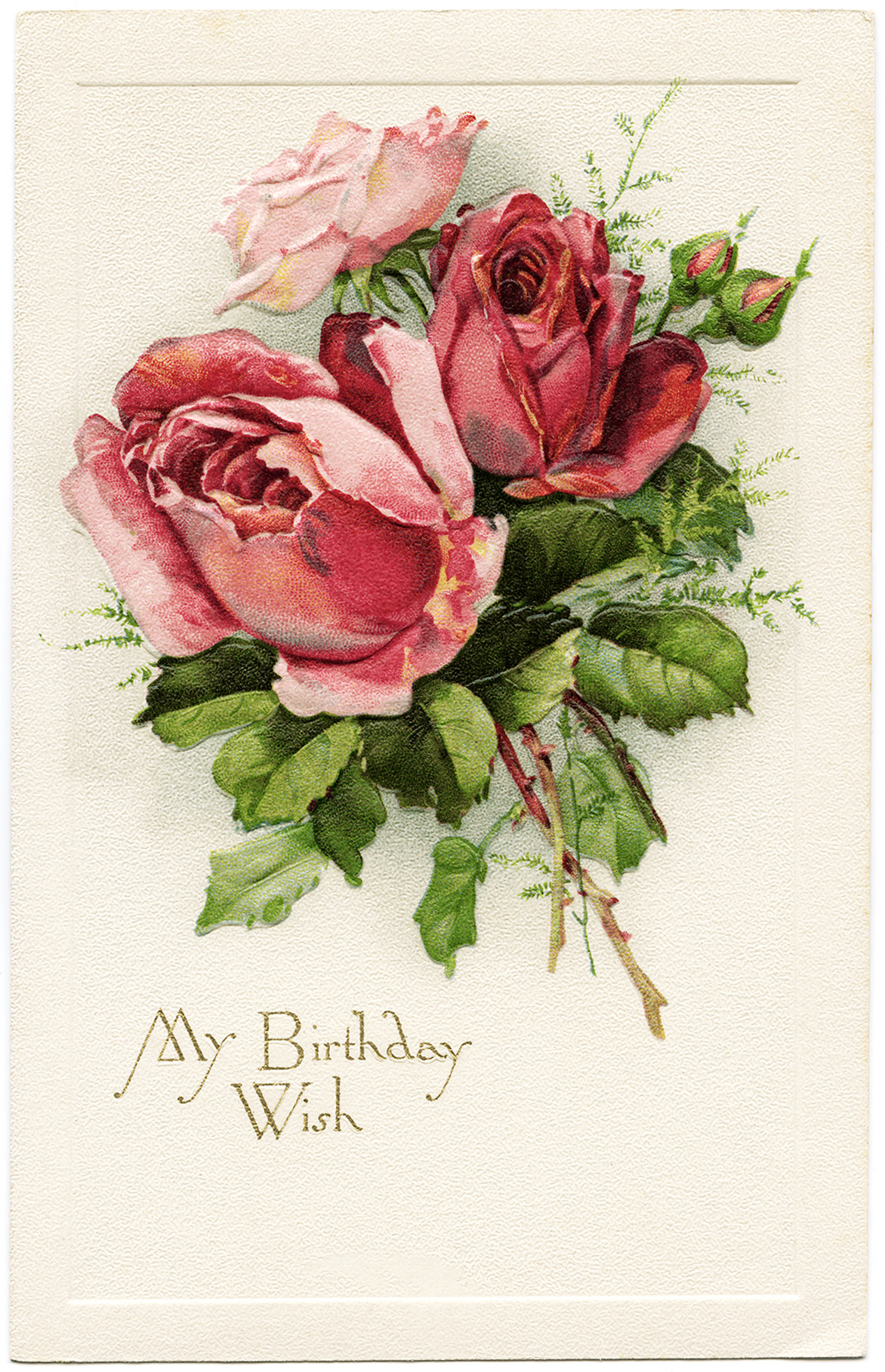 Free Vintage Image My Birthday Wish Roses Postcard Old