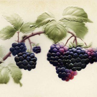 Free vintage clip art purple fruit black berries postcard