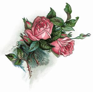 Pink Roses Vintage Clip Art