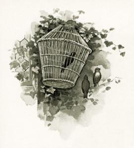 vintage bird clipart, bird in cage graphics, old fashioned birdcage image, antique bird illustration, free bird printable