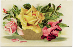 Free vintage clip art postcard yellow pink roses