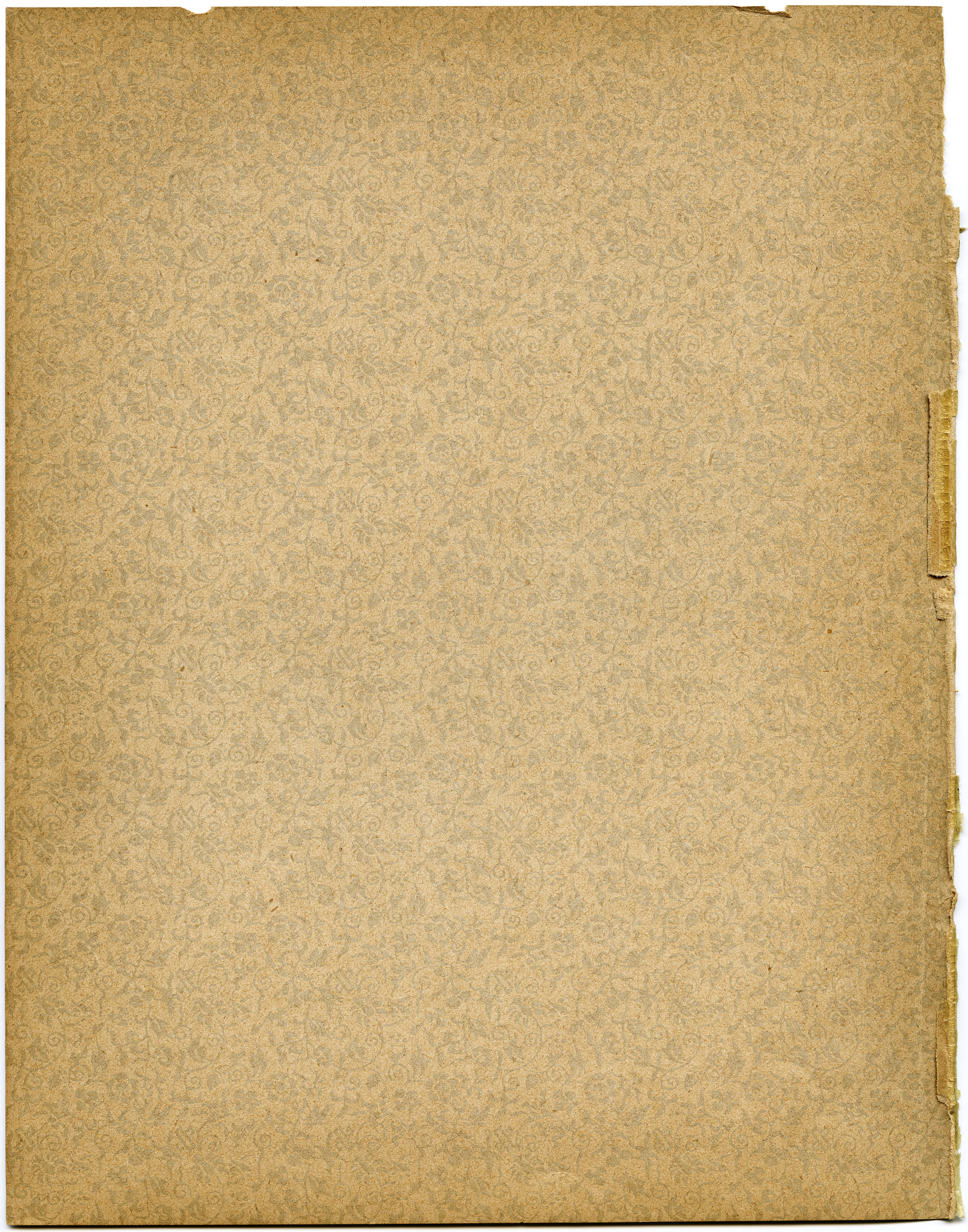 shabby aged endpaper, vintage paper graphics, old yellowed paper, antique book page, digital texture image