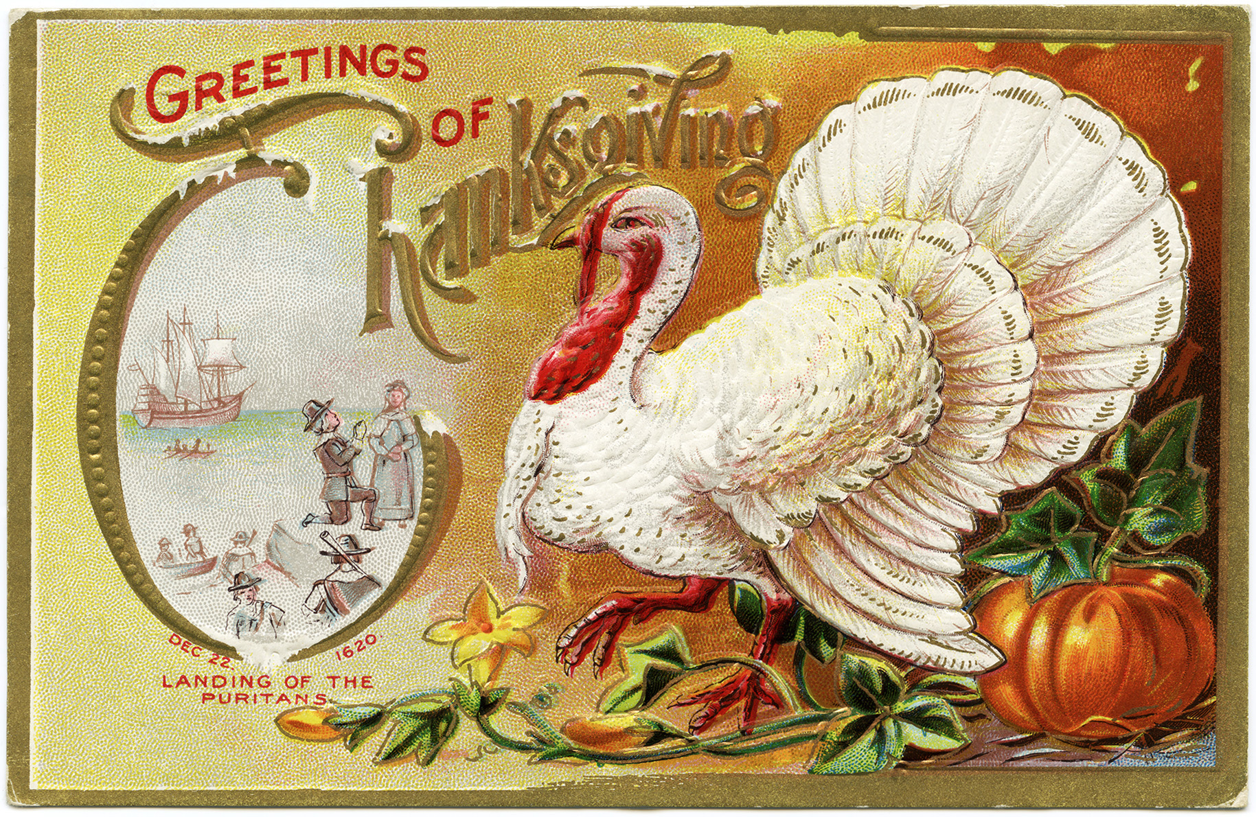 free vintage holiday printable, white turkey image, old thanksgiving card, antique thanksgiving turkey graphics