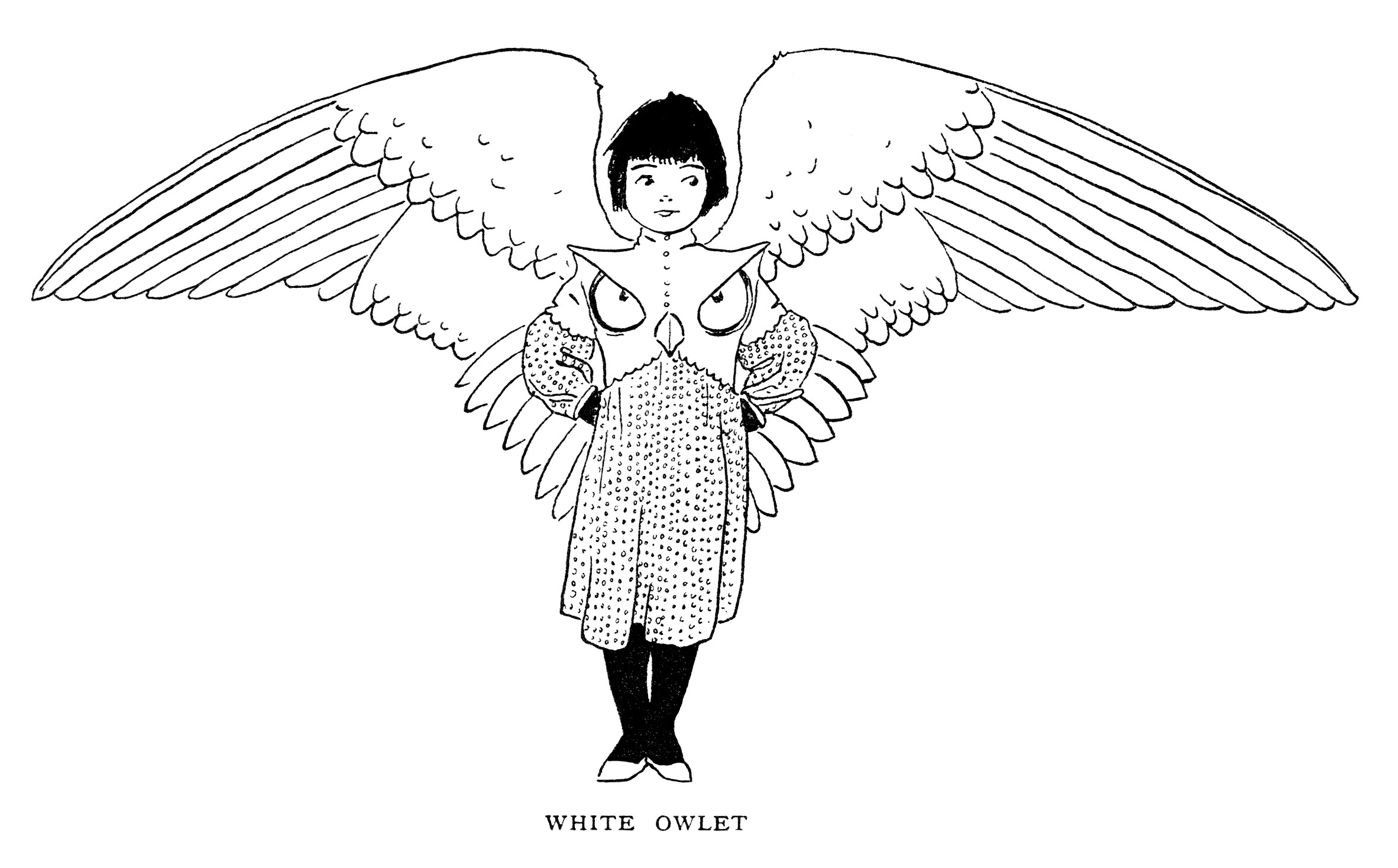 Free vintage storybook character white owlet clip art illustration