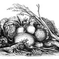 vintage fall harvest clip art, black and white clipart, display of vegetables image, garden veggies illustration, mrs beeton food graphic