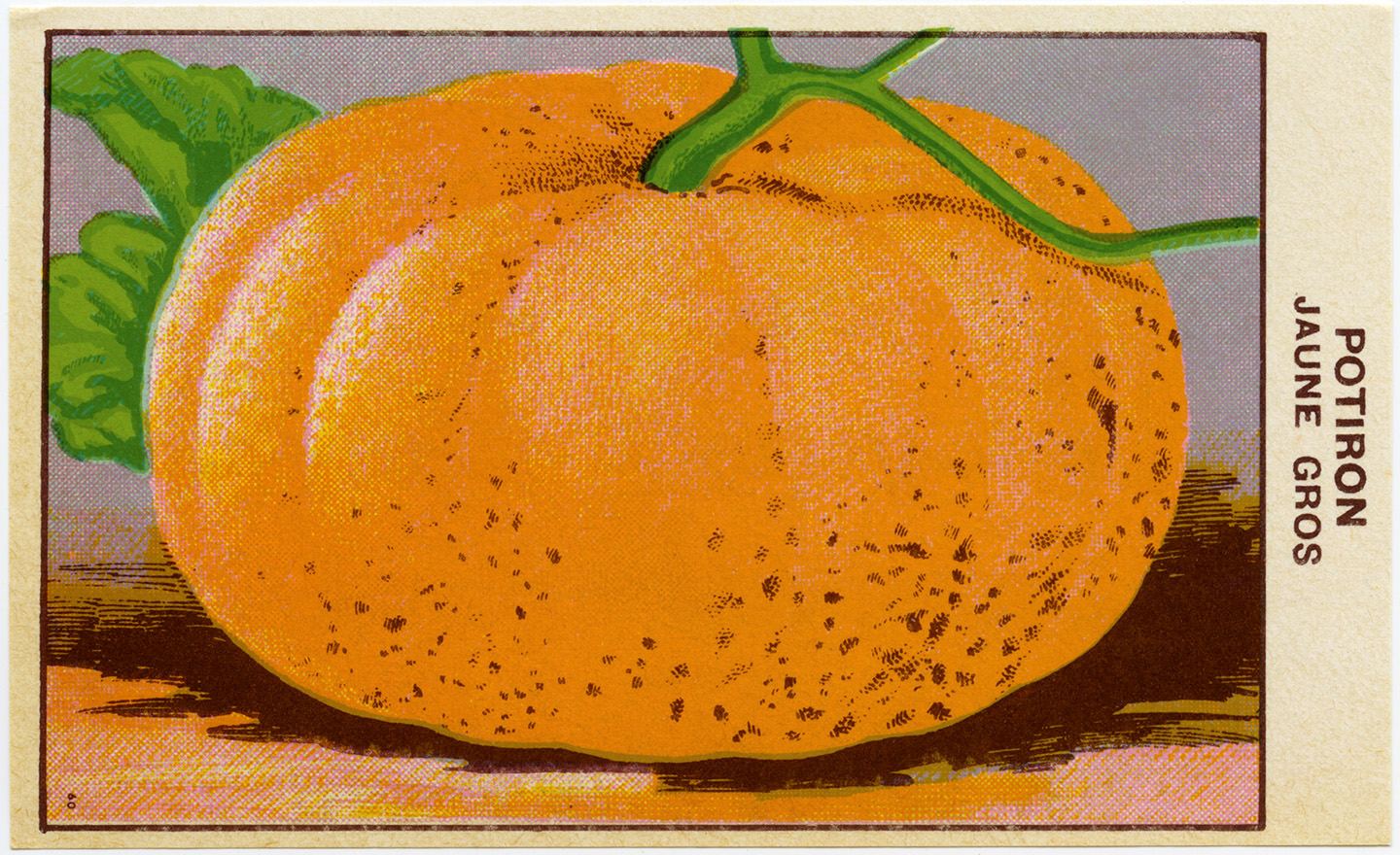 French Pumpkin Seed Label ~ Free Clip Art - Old Design ...